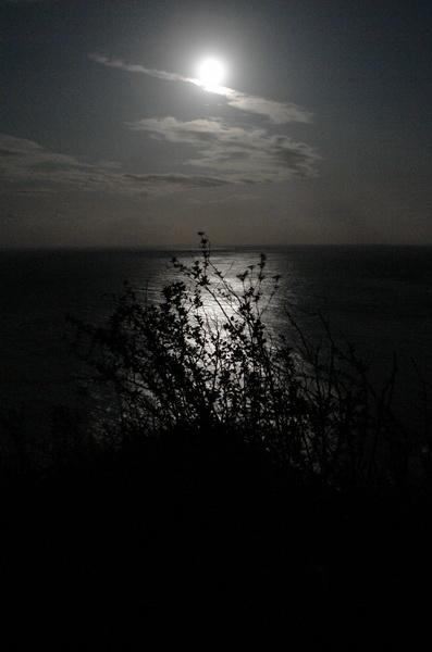 Меловые утесы острова Рюген