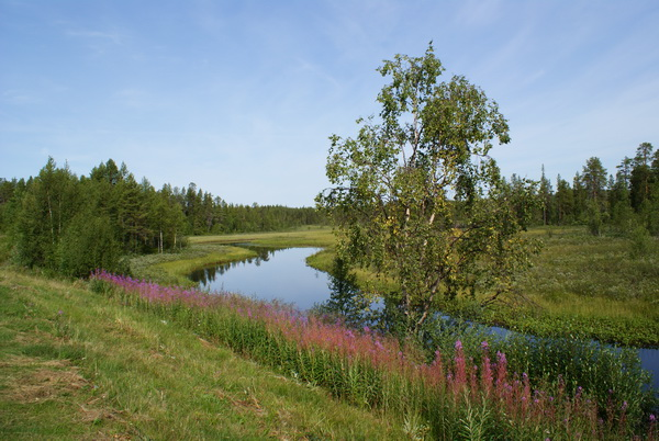 Шведская Лапландия