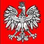 С марта 2012 года в Польше увеличиваются штрафы за нарушение ПДД
