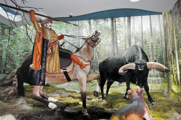Беловежская пуща, Музей Природы. Шляхетская охота