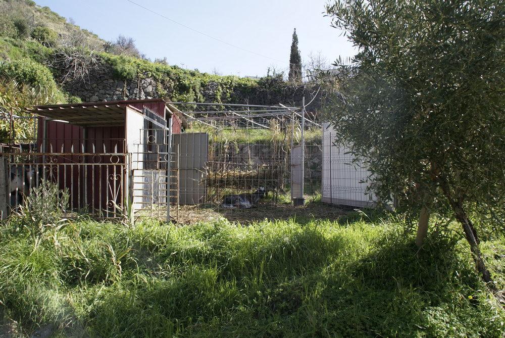 Гран-Канария, огороды