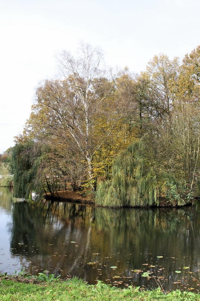 каналы в Бюргерпарке Бремена
