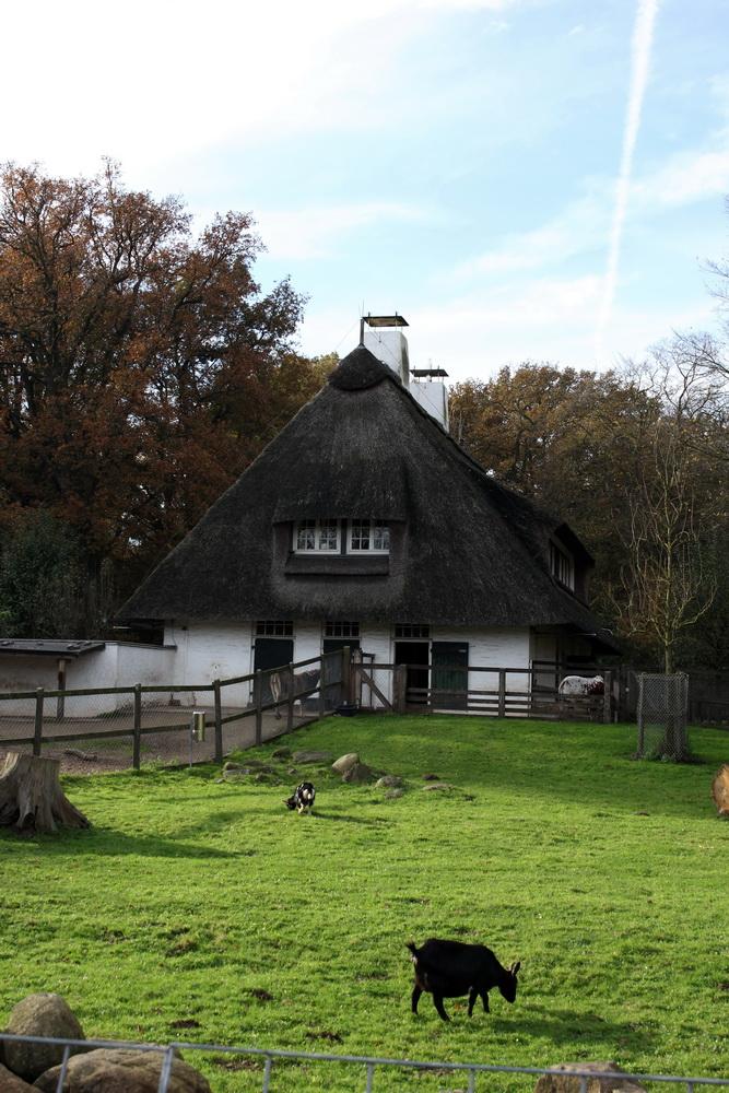 мини-зоопарк в Бюргерпарке Бремена