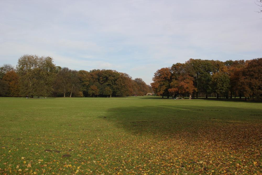Лужайка в Бюргерпарке Бремена