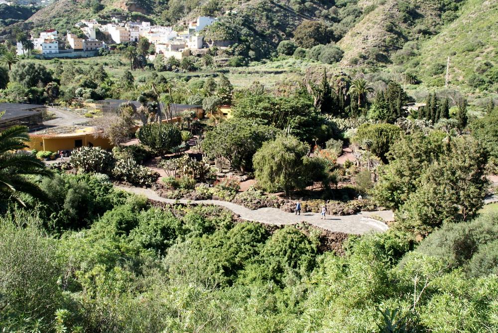 Ботанический сад на Гран-Канарии