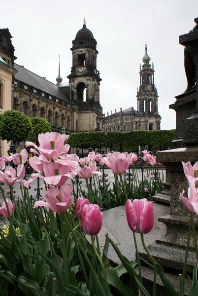 Дрезден, Балконы Европы