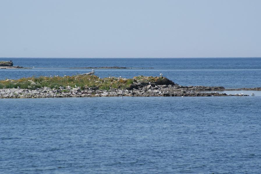 остров Вильсанди