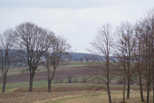 Грюнвальд поле битвы, место развертывания войск Витовта, ВКЛ
