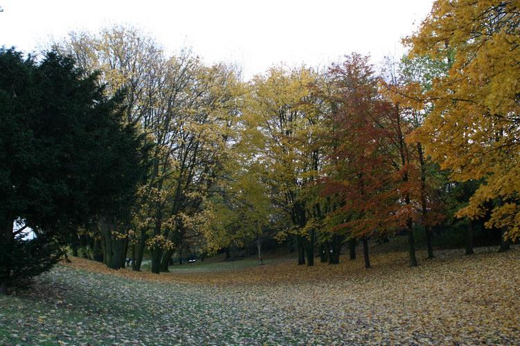 Гамбург, золотая осень