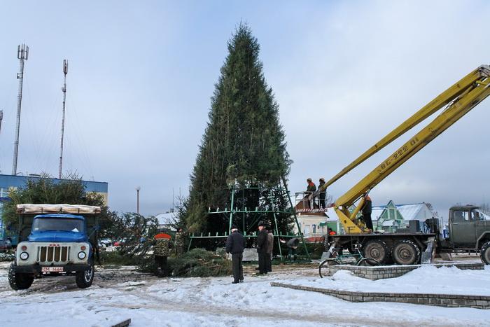 Ивье, новогодняя елка