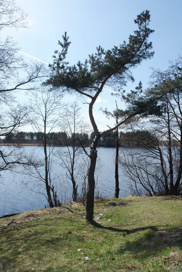 Подсвилье, озеро