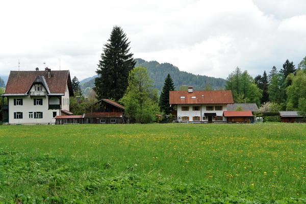 дорога в замок Людвига Баварского Нойшванштайн