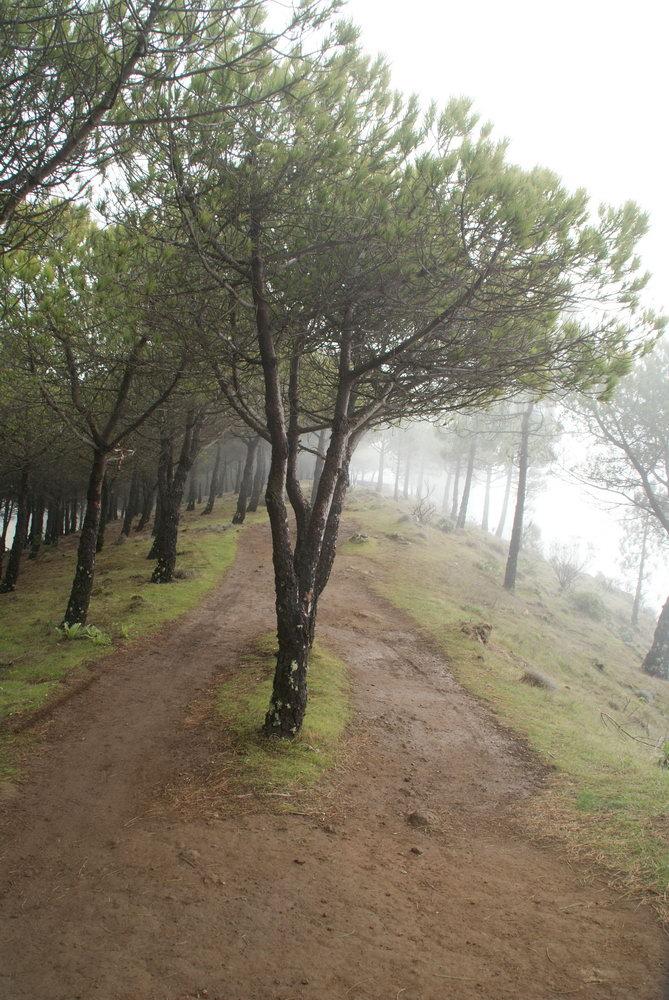 От роке Нубло до Круз де Техеда