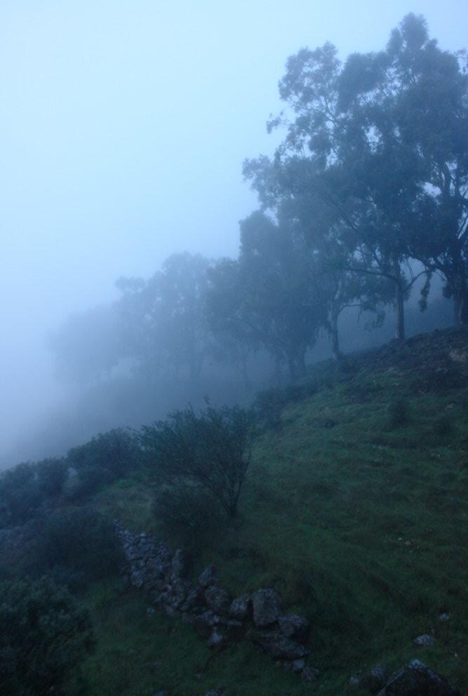 спуск к Техеде в тумане