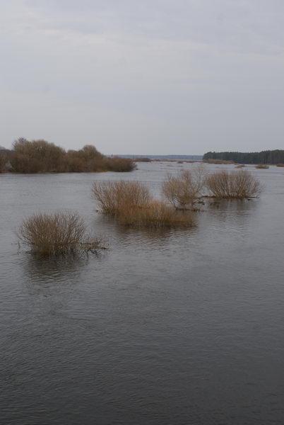 Наводнение в Белоруссии. Разлив реки Неман. Подтопление. Деревня Подъельники