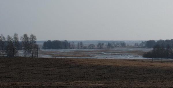 Паводок в Беларуси. Разлив реки Усса.