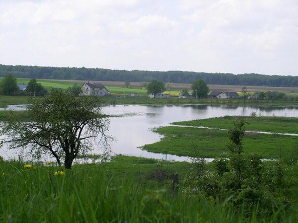 Пейзаж у Вишнево